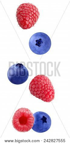 Isolated Galling Berries. Flying Raspberry And Blueberry Fruits Isolated On White Background With Cl
