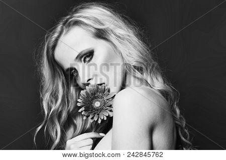 Women Face Skin Care. Portrait Women Face In Your Advertisnent. Closeup Portrait Of One Beautiful Se
