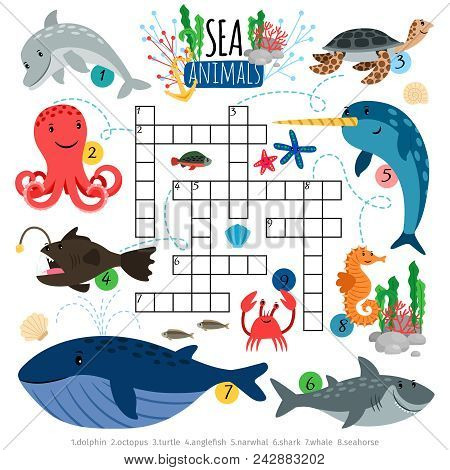 Sea Crossword. Ocean Animals Crosswords Game For Kids, Vector Brainteaser Word Puzzle With Dolphin A