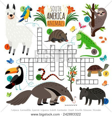 American Animals Crossword. South America Kids Cross Word Search Puzzle Game With Llama And Toucan,