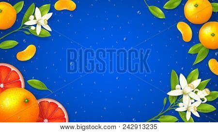 Natural Citrus Fruit Background. Top View On Realistic Flowers And Citrus Fruit On Blue Background W