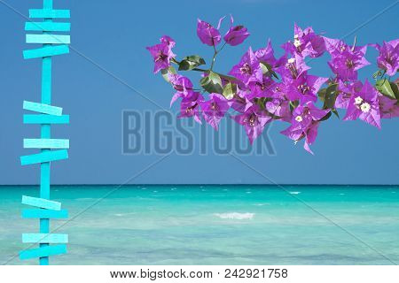 Beautiful Ocean Landscape With Sea Sky And Horizon And Pink Bougainvillea Turquoise Wooden Signpost