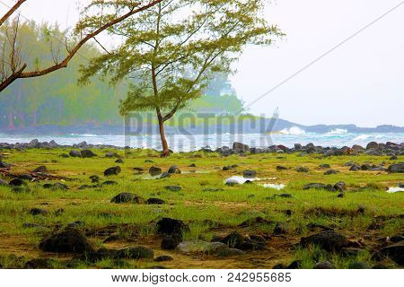 Waves Crashing Onshore To A Rural Rugged Beach With Lush Green Grasslands Taken At A Tropical Rain F