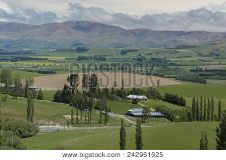 Mountains, Farms And Grasslands Of New Zealand