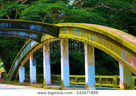 Bridge Covered In Moss Over The Wailuku River Surrounded By A Lush Green Forest Taken In Hilo, Hi