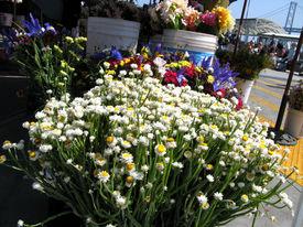 Farmersmarketflowers