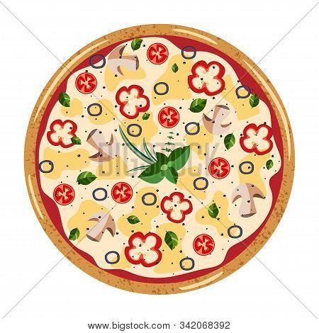 Vegetarian Whole Pizza Top View With Different Ingredients: Mushroom, Olive, Pepper,tomato. Vector I