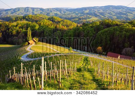 Slovenian Heart Shape Wine Road Among Vineyards In Slovenia