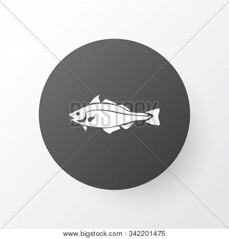 Haddock Icon Symbol. Premium Quality Isolated Codfish Element In Trendy Style.