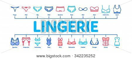 Lingerie Bras Panties Minimal Infographic Web Banner Vector. Fashion Bra And Pants, Bikini And Swims