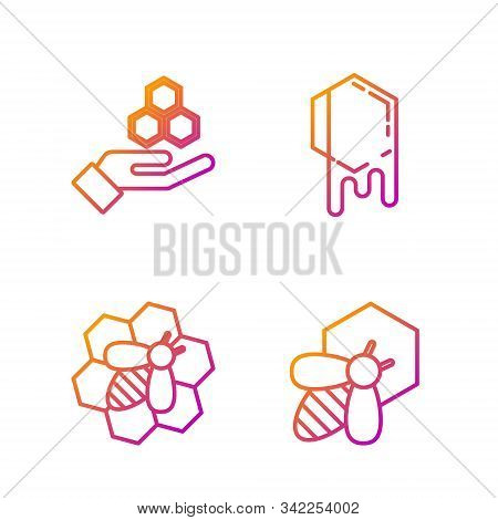 Set Line Bee And Honeycomb, Bee And Honeycomb, Honeycomb And Hand And Honeycomb. Gradient Color Icon