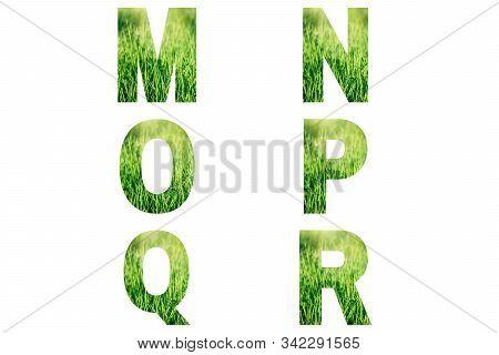 Green Font Alphabet M, N, O, P, Q, R Made Of Fresh Green Grass Background.