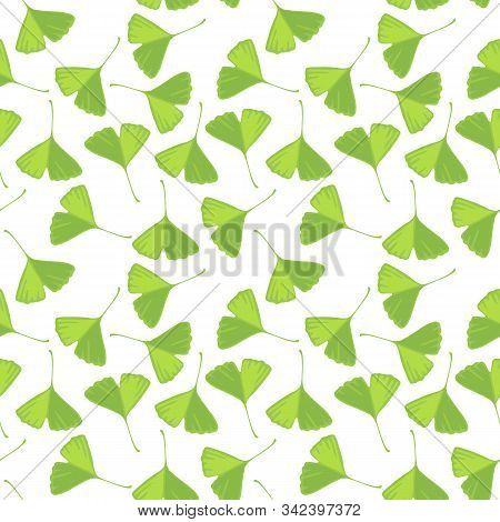 Vector Seamless Pattern With Drawing Green Leaves Of Gingko Tree, Botanical Illustration, Hand Drawn