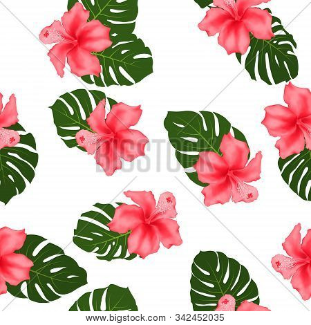Red Hibiscus Flowers Monstera Leaves Tropical Seamless Pattern For Textile Print. Exotic Floral Wall