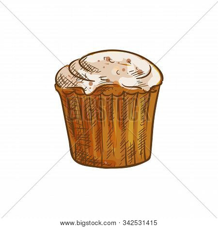 Muffin Or Cupcake, Isolated Pastry Food Sketch. Vector Baked Muffin, Cake Bun Bakery With Buttercrea