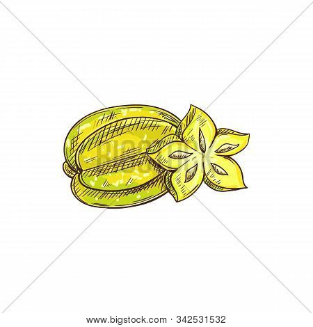 Carambola Isolated Whole And Cut Fruit Sketch. Vector Starfruit Star Shape Slice, Exotic Tropical Fo