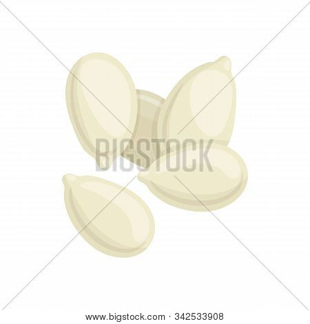 Pumpkin Seeds In White Shell Isolated. Vector Gourd Grains, Natural Dieting Food Snack