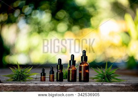 Cannabis Cbd Oil Hemp Products Cannabis Oil, Cbd Oil Cannabis Extract, Medical Cannabis Concept.