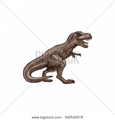 T-rex Dinosaur Isolated Prehistoric Animal Sketch. Vector Tyrannosaurus, Raptor Triceratops Wildlife