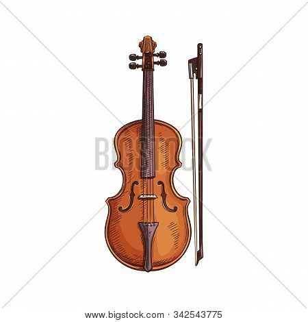 Italian Viola Isolated Retro Musical Instrument. Vector Wooden Violin With Bow, Cello Sketch