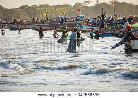 Tanji, The Gambia - November 21, 2019: Scene With Men And Women Carrying Fish From The Boats To The