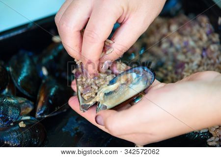 Preparing Stuffed Mussels. Oysters, Mussels Stuffed Delicious Seafood. It Is Made By Filling The Ins