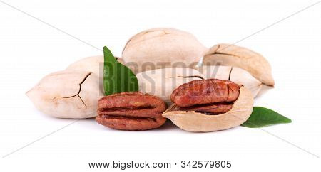 Pecan Nuts With Leaves, Isolated On White Background. Shelled And Unshelled Pecan.