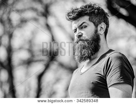 Bearded Man With Lush Hair. Free And Happy Time. Male Fashion And Beauty. Brutal Male With Perfect S