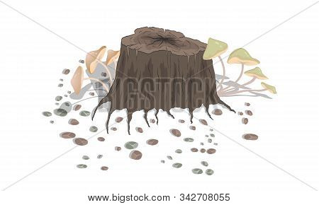 Mushrooms Growing On A Stump With Grass And Stones On A White Background. Vector Illustration