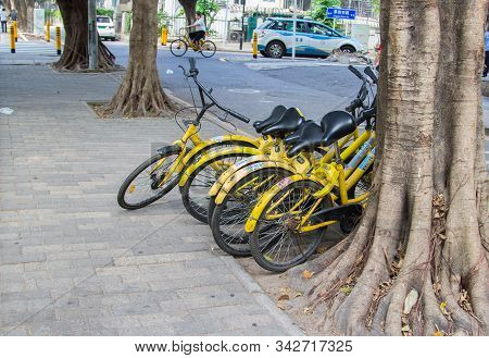 Shenzhen, China - November 14, 2018: Yellow Bicycles Of A Bicycle Sharing Company Carelessly Laid On