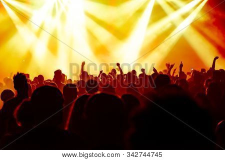 cheering people at rock concert