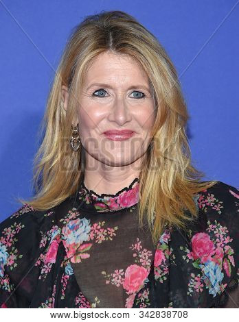 LOS ANGELES - JAN 02:  Laura Dern arrives for the PSIFF Awards Gala 2020 on January 02, 2020 in Palm Sprimgs, CA