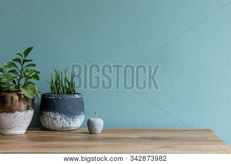 Stylish And Modern Composition Of Plants In Different Pots On The Wooden Table With Elegant Accessor