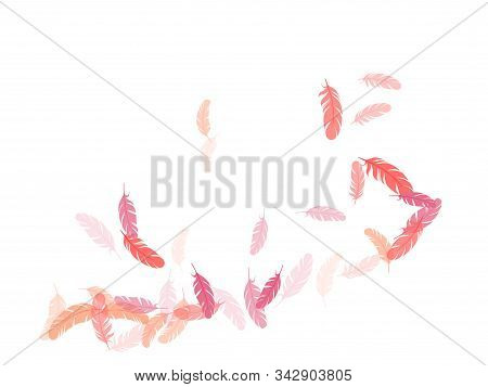 Majestic Pink Flamingo Feathers Vector Background. Quill Plumelet Silhouettes Illustration. Detailed