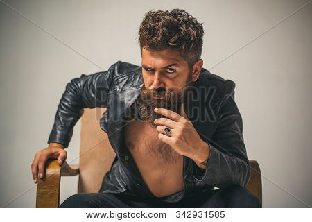 Brutal Bearded Fashionable Man With Serious Face Sitting In Chair And Looking At Camera. Macho Man C