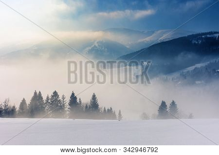 Blizzard In Mountains. Magic Scenery With Clouds And Fog On A Sunny Winter Day. Trees In Mist On A S