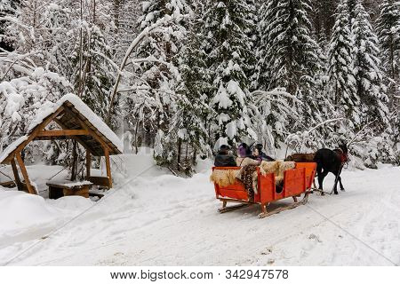 Synevyr National Park, Ukraine - 11 Feb 2018: Winter Holiday Fun. Riding Horses In Red Open Sleigh T
