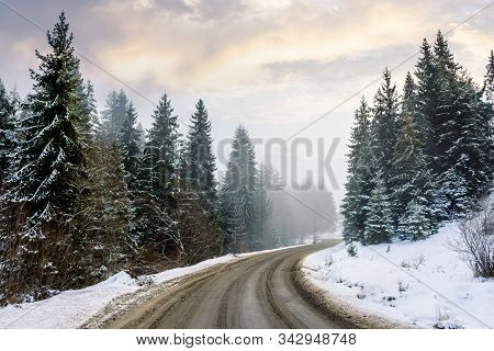 Country Road Through Forest. Misty Winter Weather In The Morning. Snow On The Roadside. Overcast Sky