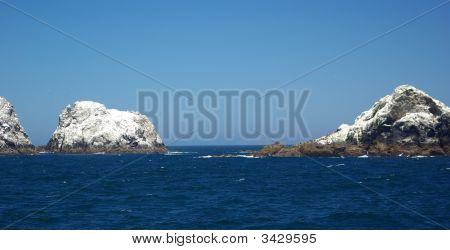 Farallon Islands California