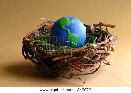 Nurturing Earth