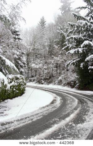 Snowy Curve
