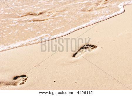 Sea Meets The Footprint