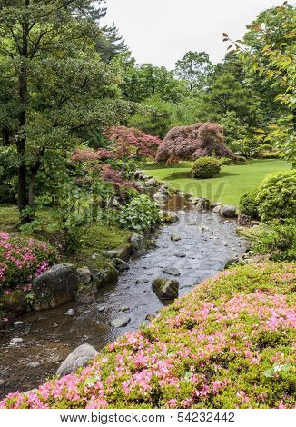 Fragment Of A Japanese Garden With Stream, Pink Flowers And Acer Trees With Red Leaves.