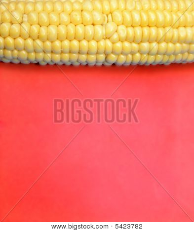 Corn On Red Background