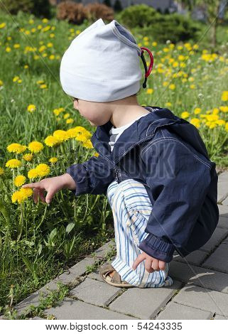 Spring Child With Dandelions