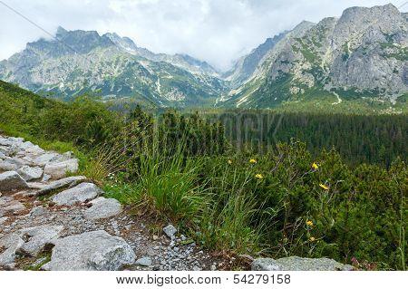 High Tatras (slovakia) Summer View.