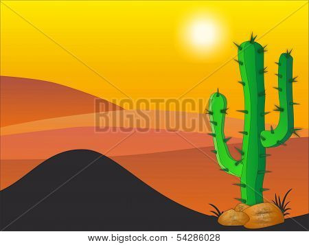 Cactus Plants In Desert - Stock Illustration