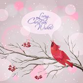 Vector snowy Christmas card with frozen Rowan tree branches berries singing red Waxwing bird snowflakes speech bubble greeting text on abstract bokeh background. Holiday Xmas postcard poster