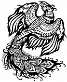 phoenix or feng huang black and white illustration poster