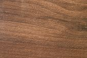 Pacific walnut tree Wooden texture from genuine carpentry workshop poster